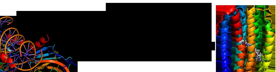 Fachschaft Biochemie (FSBC) | Goethe-Universität